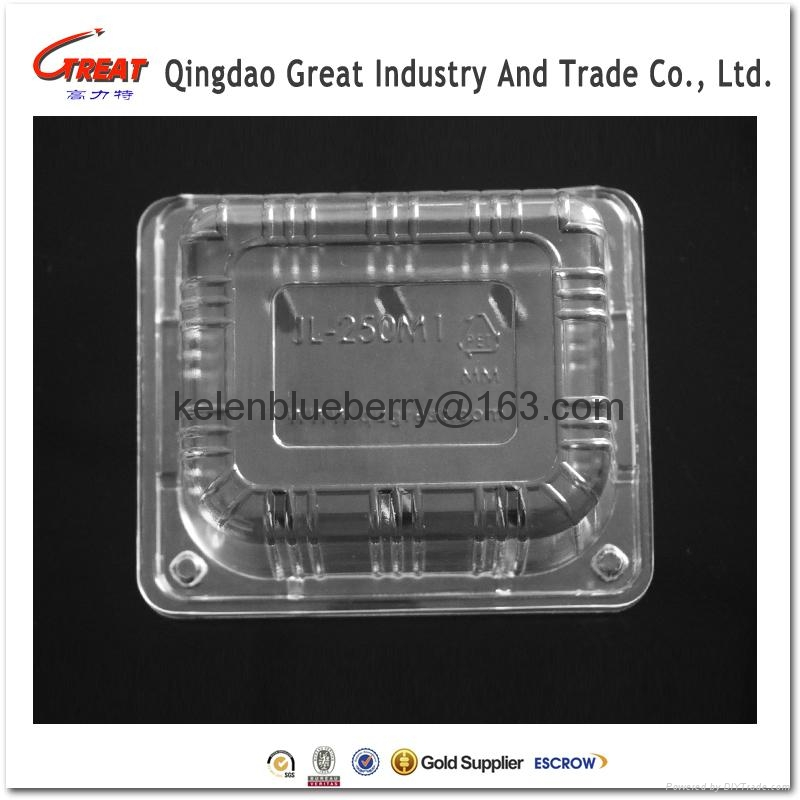250g plastic cherry tomatoes clamshell packaging 1