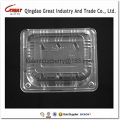 250g plastic cherry tomatoes clamshell packaging