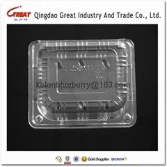 250g plastic cherry tomatoes clamshell
