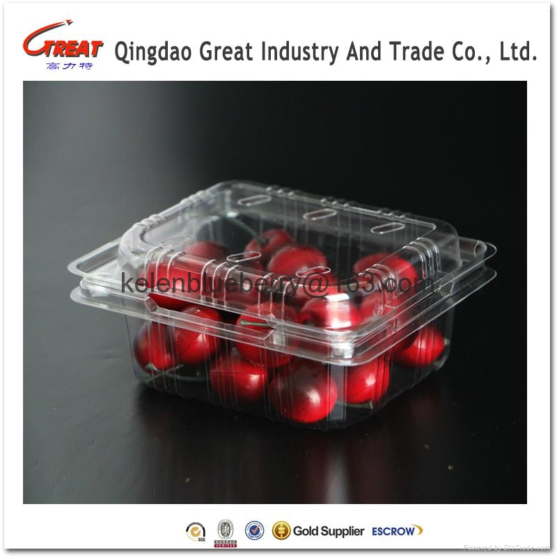 250g plastic cherry tomatoes clamshell packaging 5