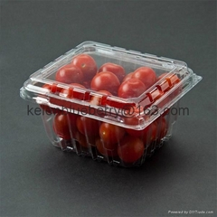 250g plastic cherry tomatoes fruit