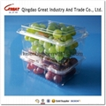 500g plastic fruit packing container