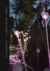 光纖庭院藝朮燈