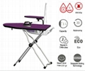 Ironing systems with a professional iron