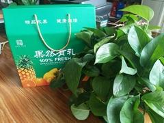 果然有禮水果通用禮品箱印刷訂製加工