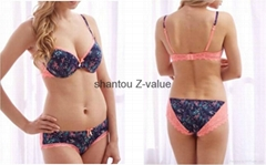 Japanese sexy bra ladies sexy panty and bra sets