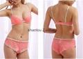 Latest Fashion Hot Sale Women Sexy Lace Lingeries bra sets