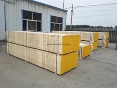 best quality OSHA LVL scaffold board/plank