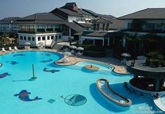 雲南漢林環保泳池循環淨化沙缸過濾機