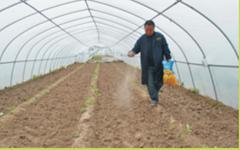 General Root Applied Series Fertilizer Rhizosphere Fertilization for plants