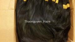 Vietnamese remy bulk hair best sellin