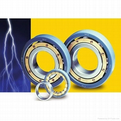 Electrically Insulation Cylindrical Roller Bearing