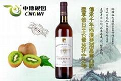 cheap wholesale Jin Zhuxia kiwi fruit glass bottle wine 6*750ml 12%vol