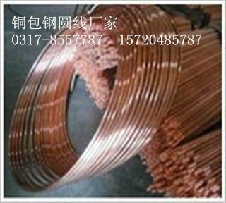 惠丰厂家专业生产铜覆钢圆线6米 50米100米各种型号齐全 欢迎电议 1