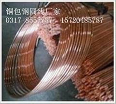 惠丰厂家专业生产铜覆钢圆线6米 50米100米各种型号齐全 欢迎电议