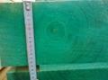 spruce - picea abies  150 x 150 x 3985