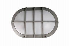 Oval led wall light with motion sensor IP65 IK10 6000K best quality