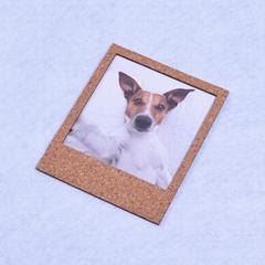 OEM customized latest design wooden mini magnet funny photo frame