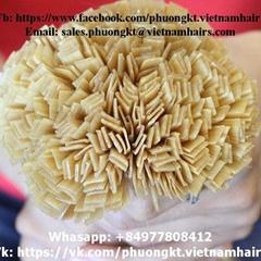 Flat-tip Blonde Best Price Best Quality Straight Vietnamese Remy Hair 55cm