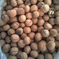 lowest price china inshell walnut  5