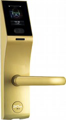 Advanced ZKTeco Smart Zinc Alloy Face Recognition Lock