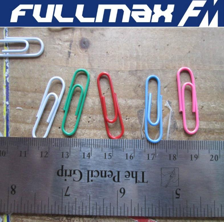 Paper Clips Vinyl Coated Accessory 1