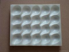 PS strawberry foam trays