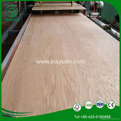the cheap and top quality plywood from Linyi in China