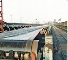 Heat resistant conveyer belt