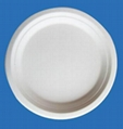 Bleached 9 Inch Round Diposable Bagasse Paper Plates 1