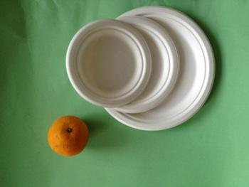 Bleached 9 Inch Round Diposable Bagasse Paper Plates 2