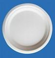 10 Inches Bio-Degradable Disposable Sugarcane Paper Microwave Plates 2