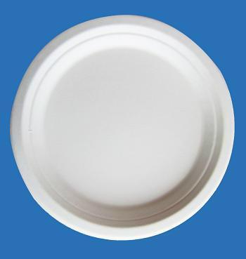 10 Inches Bio-Degradable Disposable Sugarcane Paper Microwave Plates 3