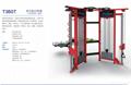室内龙门架大飞鸟训练器健身器材BLTW厂家直销 5