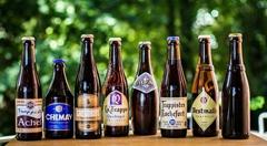 上海啤酒进口代理公司