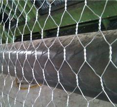 Anping factory hot dipped galvanized hexagonal chicken wire mesh