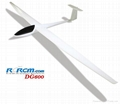 DG600 scale rc airplane of rcrcm
