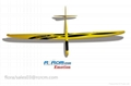 Emotion composite rc sailplane of rcrcm