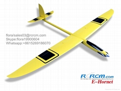 Hornet motor composite plane model of rcrcm