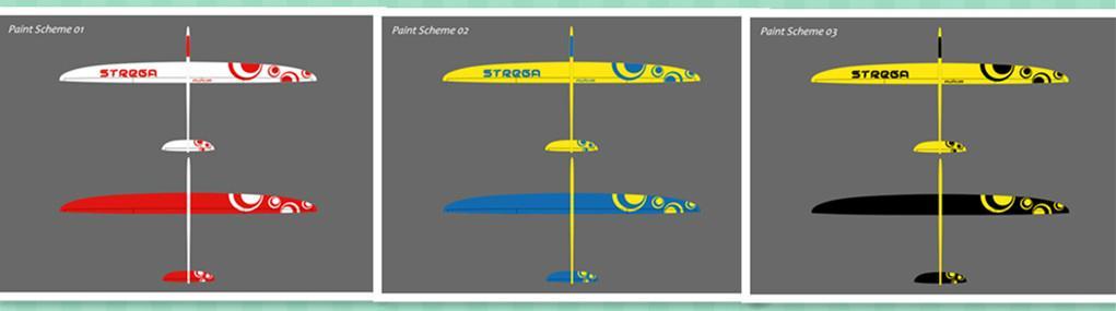Strega 2.9m wingspan rc glider model  3