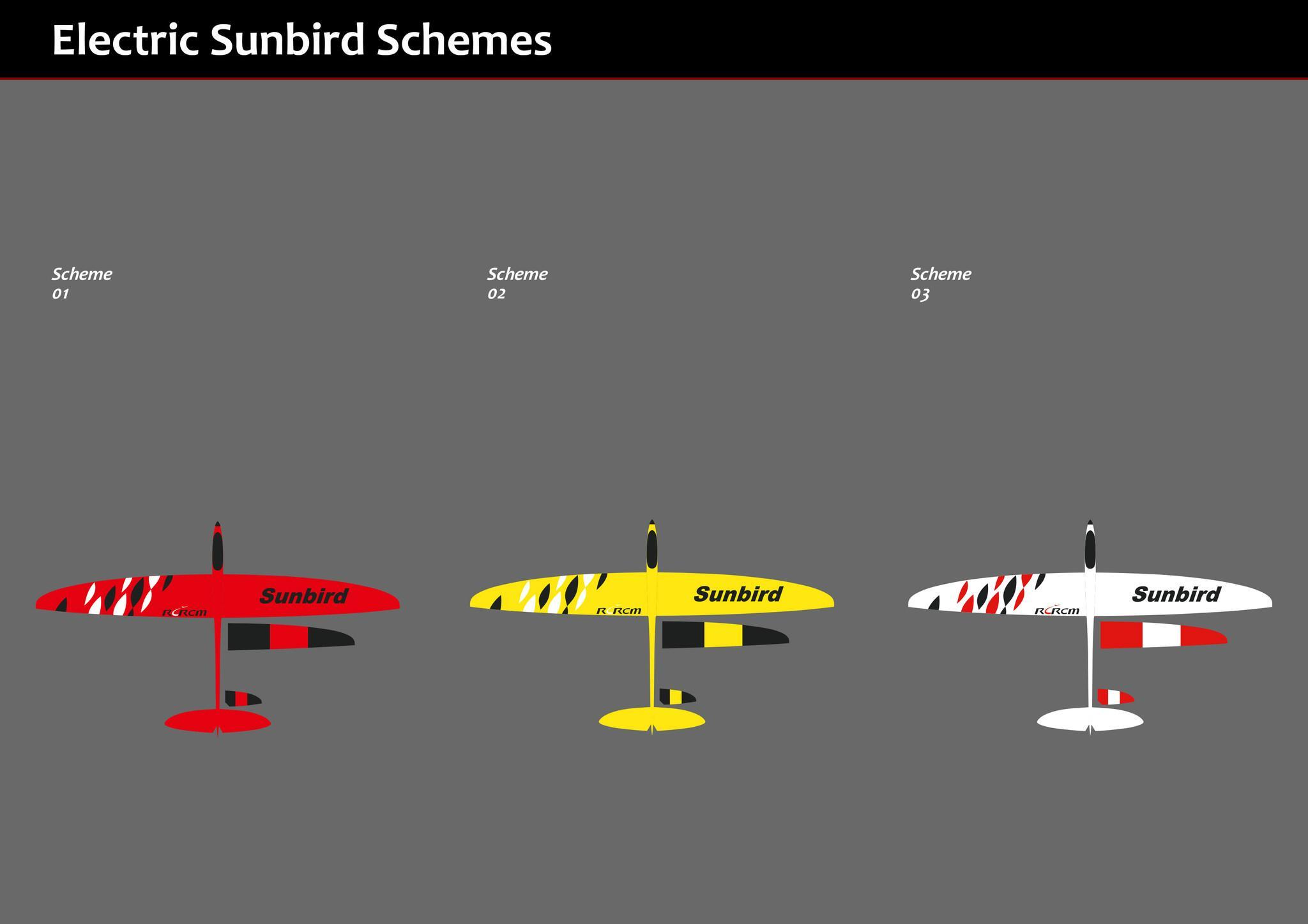 Hot Sunbird composite rc plane model 4