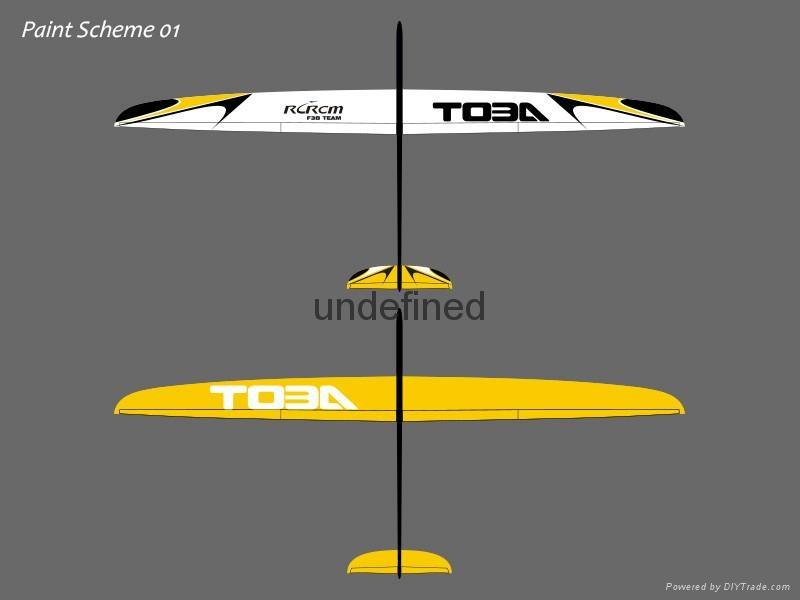 Toba 3m wingspan slope remote control glider 4