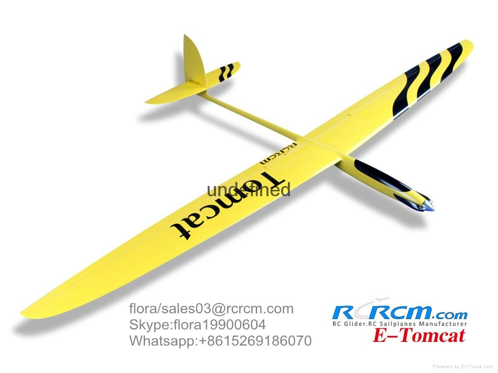 Tomcat 2.6m wingspan composite plane model 1