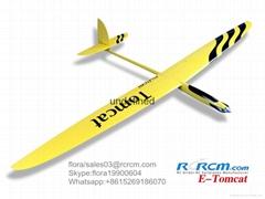 Tomcat 2.6m wingspan com