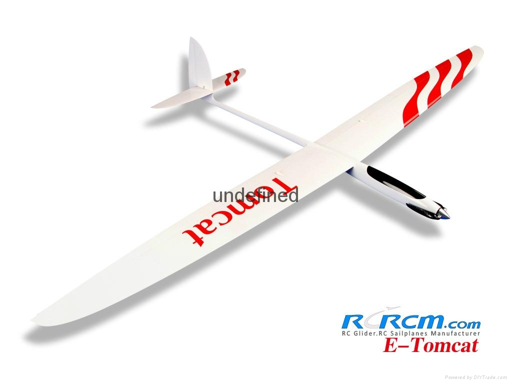 Tomcat 2.6m wingspan composite plane model 2