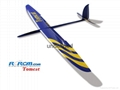 Tomcat 2.6m wingspan composite plane model 3
