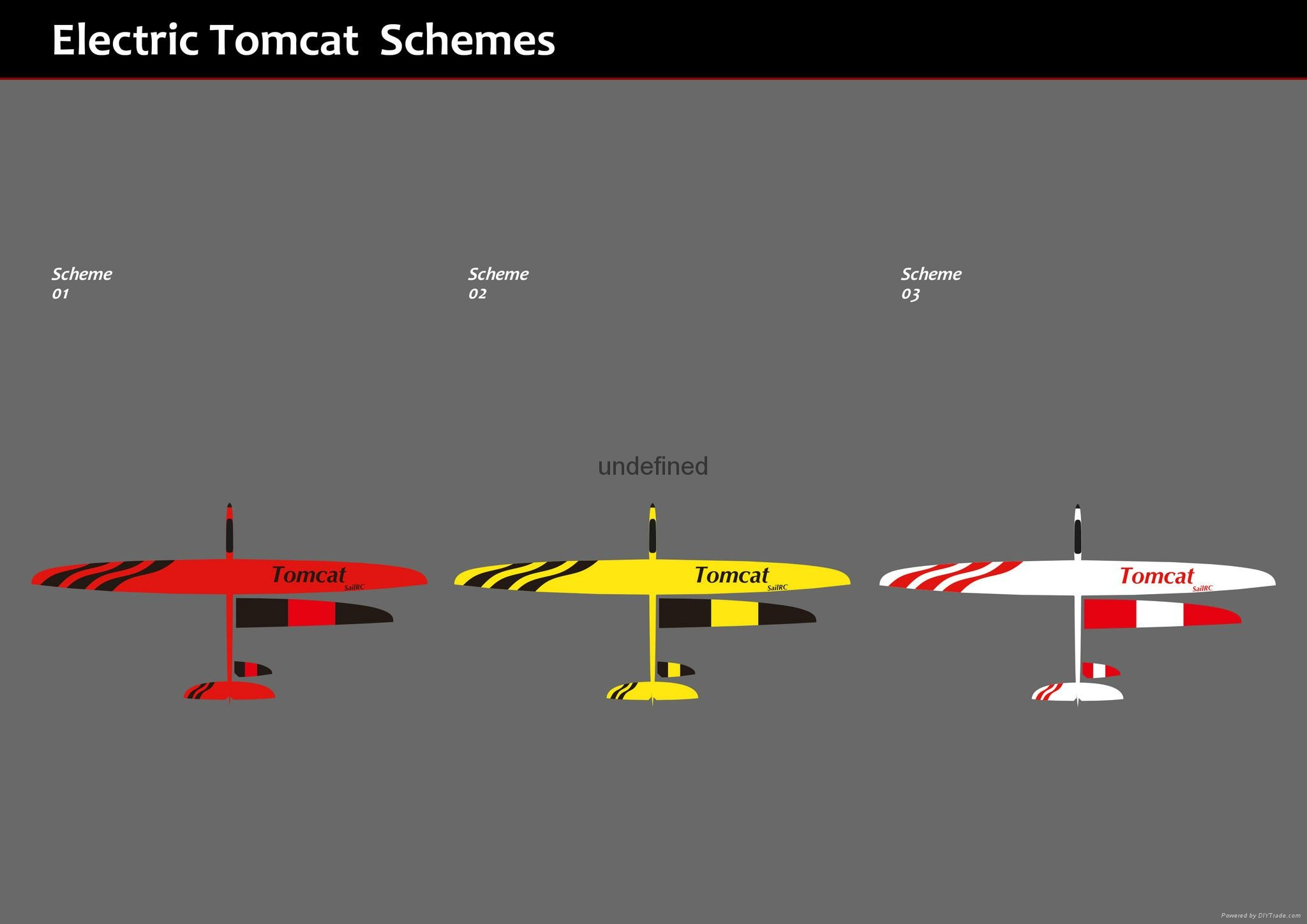 Tomcat 2.6m wingspan composite plane model 5