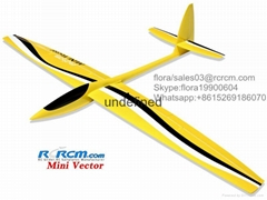Mini vector 1.69m aerobatic glider