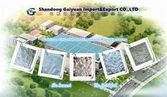 Shandong Gaiyuan Import&Export CO.,LTD