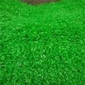 广州楼面装饰人工草皮